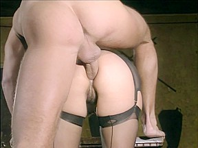 Vintage porn nice milf in seamed nylons gives...