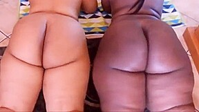 Two asses...