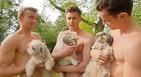 Best gay scene with twink emo boy scenes...